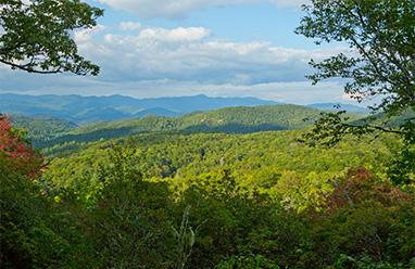 mountain property view